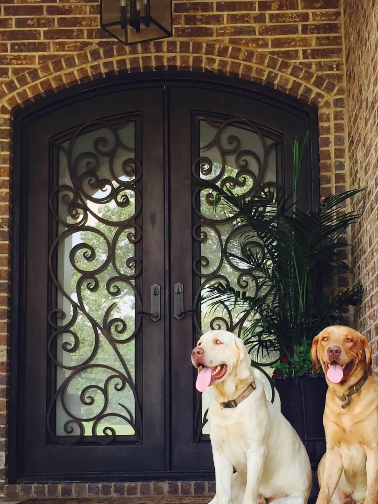 Iron Doors in Washington DC